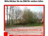 Wohngrundstück kaufen in Blieskastel, 1.200 m² Grundstück