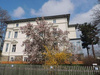 Dachgeschosswohnung mieten in Werdau, 36 m² Wohnfläche, 1 Zimmer